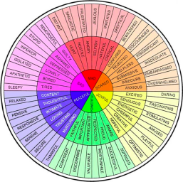 pos-feeling-wheel