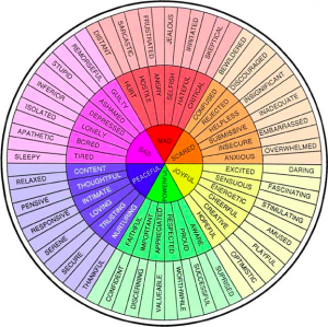 Emotion wheel:  the vast spectrum of human emotion . . . beautiful.