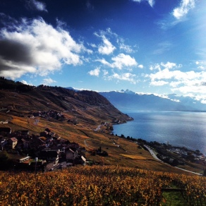 Lavaux in the fall.